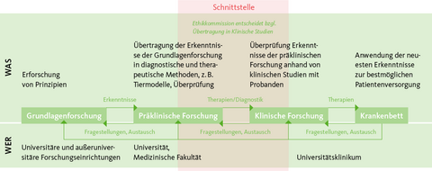 Grafik: Wie funktioniert Translation?